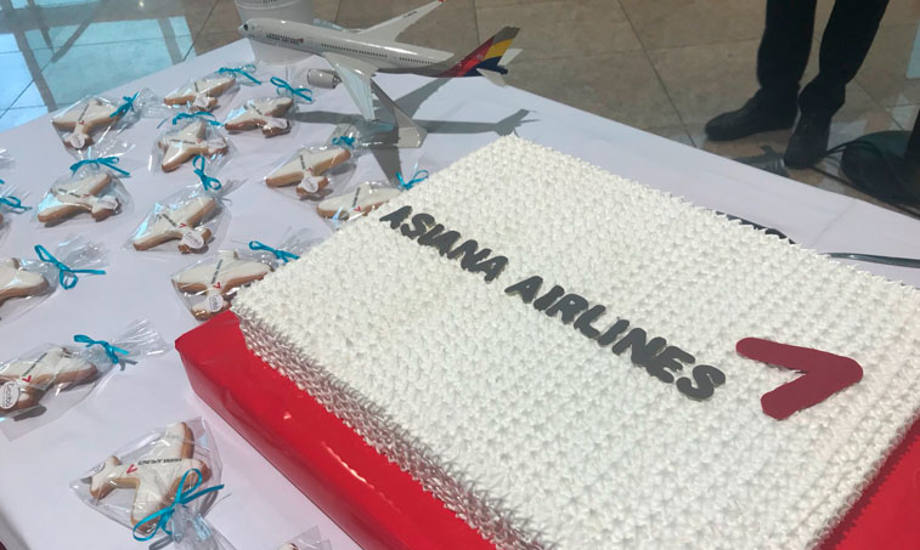 Asiana Airlines Cake